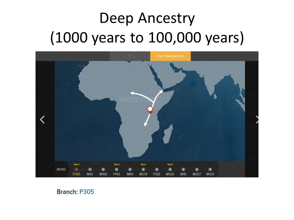 Deep Ancestry (1000 years to 100,000 years)