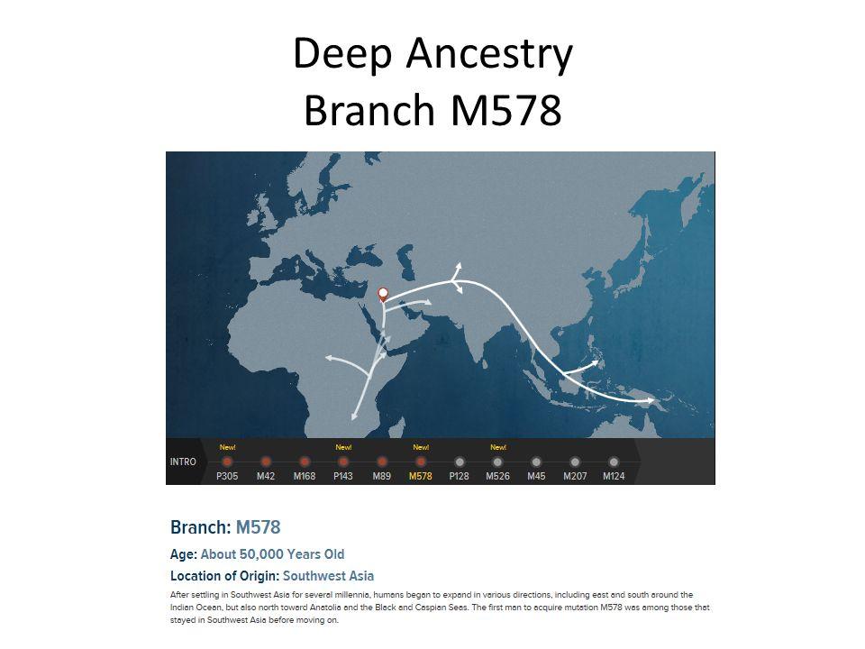 Deep Ancestry Branch M578