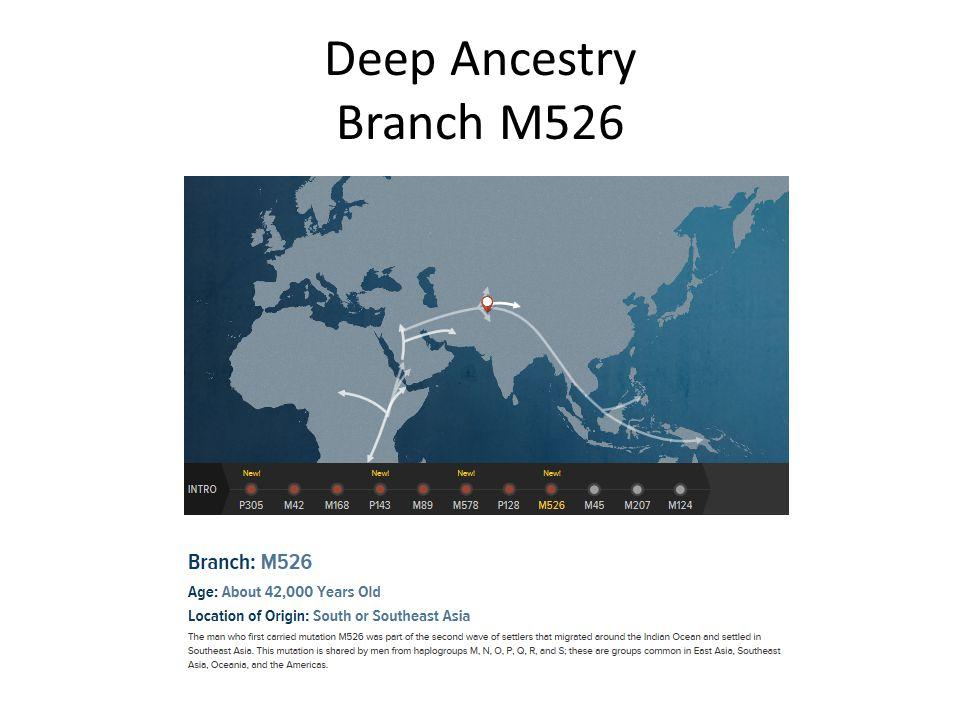 Deep Ancestry Branch M526