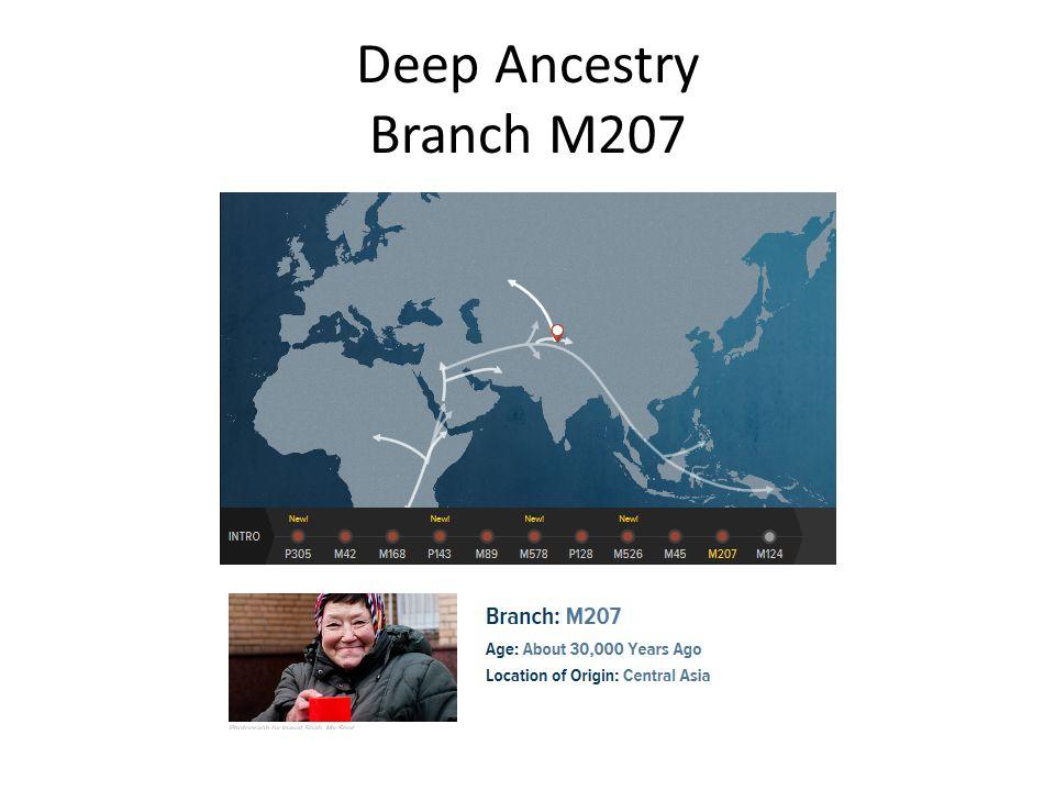 Deep Ancestry Branch M207