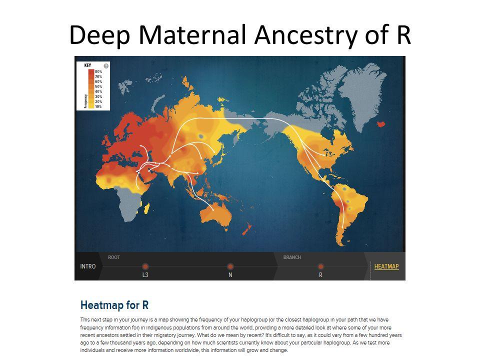 Deep Maternal Ancestry of R
