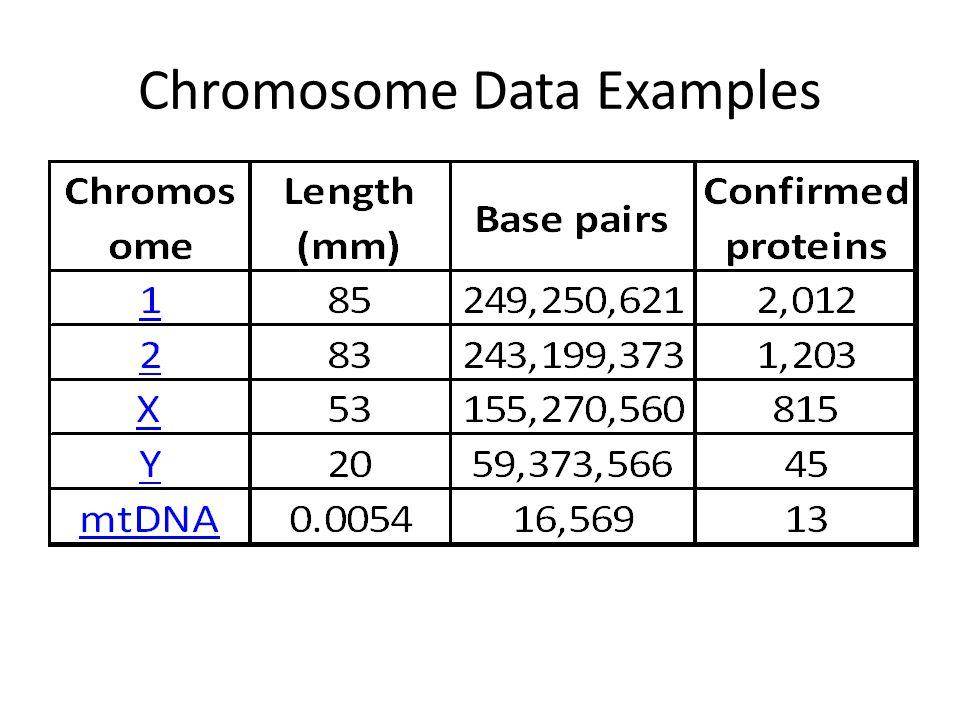 Chromosome Data Examples