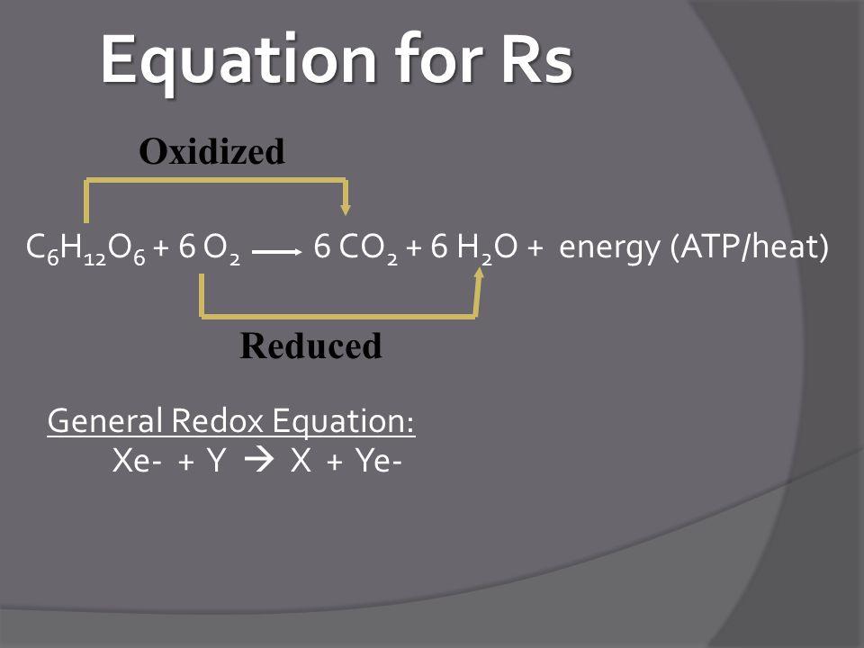Equation for Rs C 6 H 12 O 6 + 6 O 2 6 CO 2 + 6 H 2 O + energy (ATP/heat) General Redox Equation: Xe- + Y  X + Ye- Reduced Oxidized
