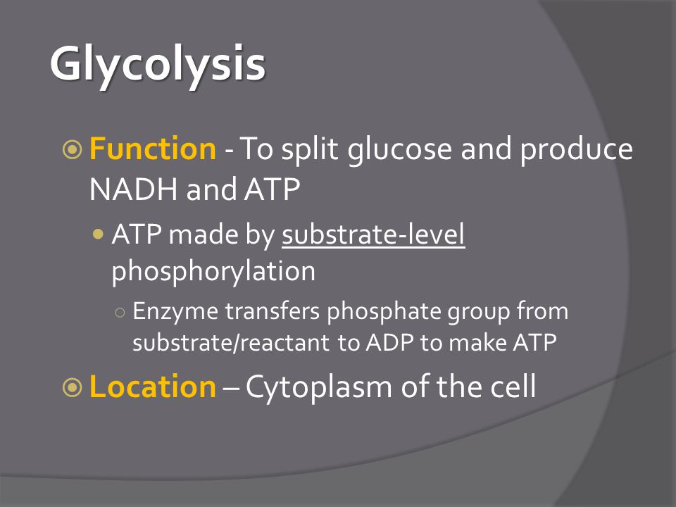 Glycolysis  Function - To split glucose and produce NADH and ATP ATP made by substrate-level phosphorylation ○ Enzyme transfers phosphate group from substrate/reactant to ADP to make ATP  Location – Cytoplasm of the cell