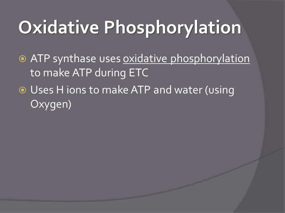 Oxidative Phosphorylation  ATP synthase uses oxidative phosphorylation to make ATP during ETC  Uses H ions to make ATP and water (using Oxygen)