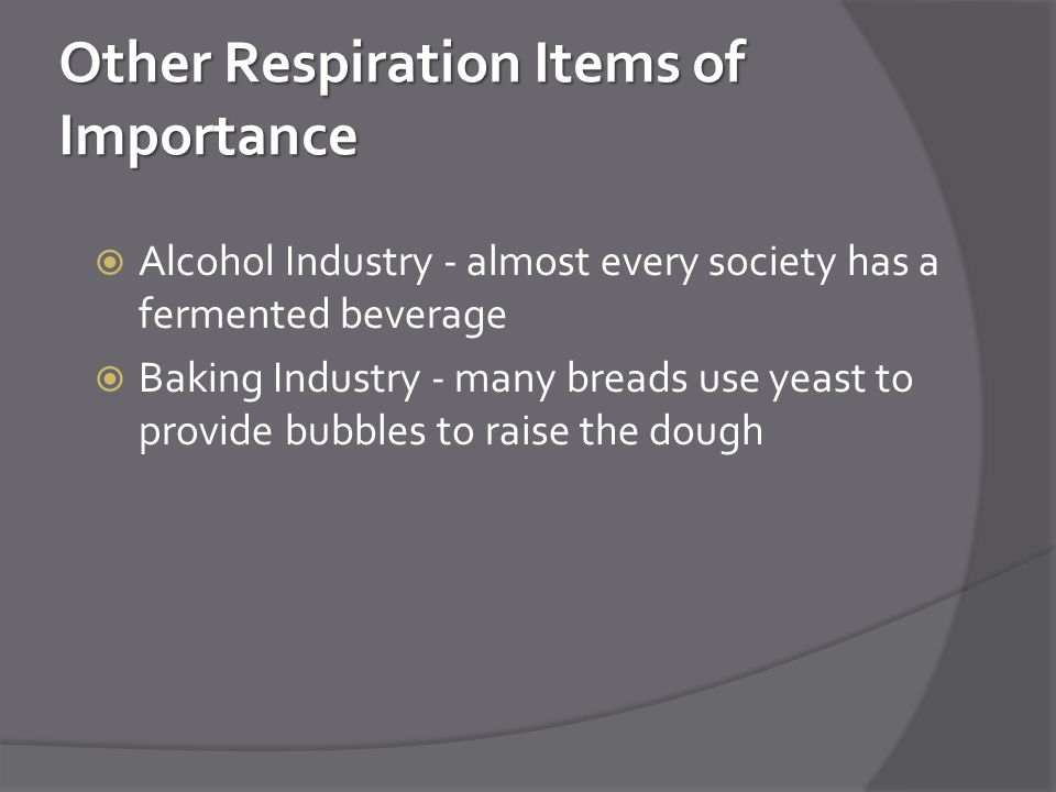 Other Respiration Items of Importance  Alcohol Industry - almost every society has a fermented beverage  Baking Industry - many breads use yeast to provide bubbles to raise the dough