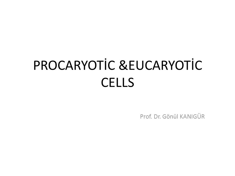 PROCARYOTİC &EUCARYOTİC CELLS Prof. Dr. Gönül KANIGÜR