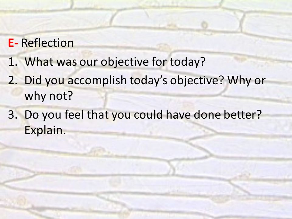 E- Reflection 1.What was our objective for today. 2.Did you accomplish today's objective.