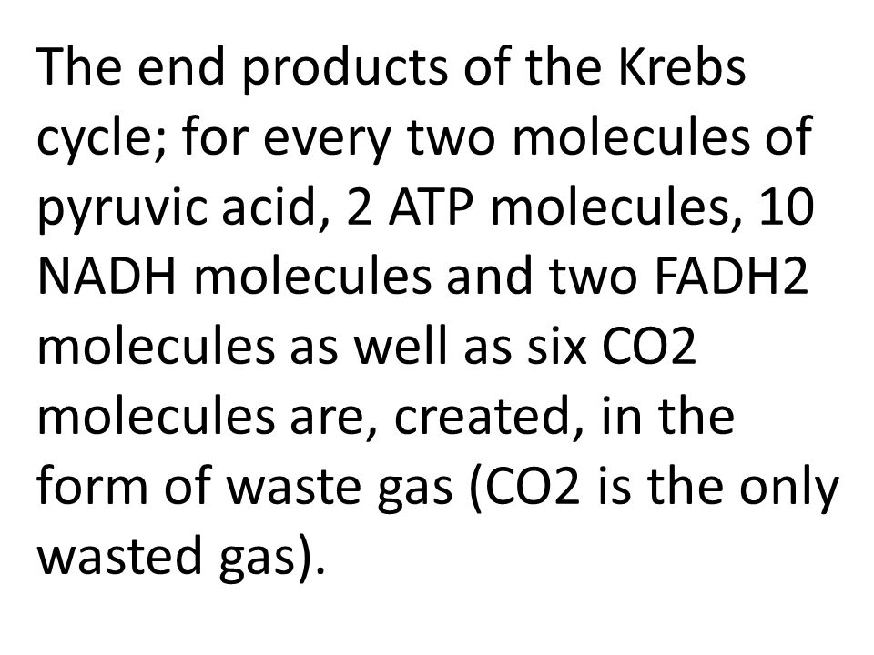 The end products of the Krebs cycle; for every two molecules of pyruvic acid, 2 ATP molecules, 10 NADH molecules and two FADH2 molecules as well as si