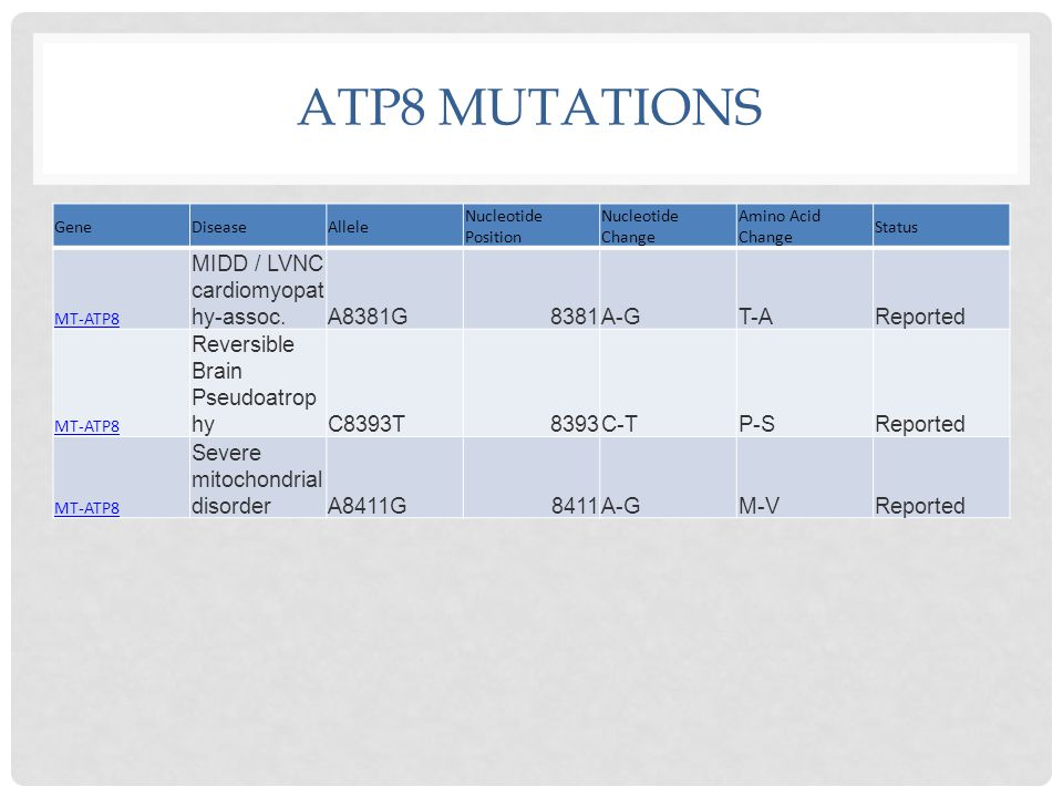 ATP8 MUTATIONS GeneDiseaseAllele Nucleotide Position Nucleotide Change Amino Acid Change Status MT-ATP8 MIDD / LVNC cardiomyopat hy-assoc.A8381G8381A-GT-AReported MT-ATP8 Reversible Brain Pseudoatrop hyC8393T8393C-TP-SReported MT-ATP8 Severe mitochondrial disorderA8411G8411A-GM-VReported
