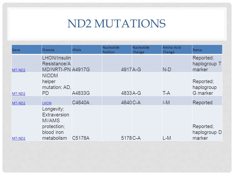 ND2 MUTATIONS GeneDiseaseAllele Nucleotide Position Nucleotide Change Amino Acid Change Status MT-ND2 LHON/Insulin Resistance/A MD/NRTI-PNA4917G4917A-GN-D Reported; haplogroup T marker MT-ND2 NIDDM helper mutation; AD, PDA4833G4833A-GT-A Reported; haplogroup G marker MT-ND2LHON C4640A4640C-AI-MReported MT-ND2 Longevity; Extraversion MI/AMS protection; blood iron metabolismC5178A5178C-AL-M Reported; haplogroup D marker