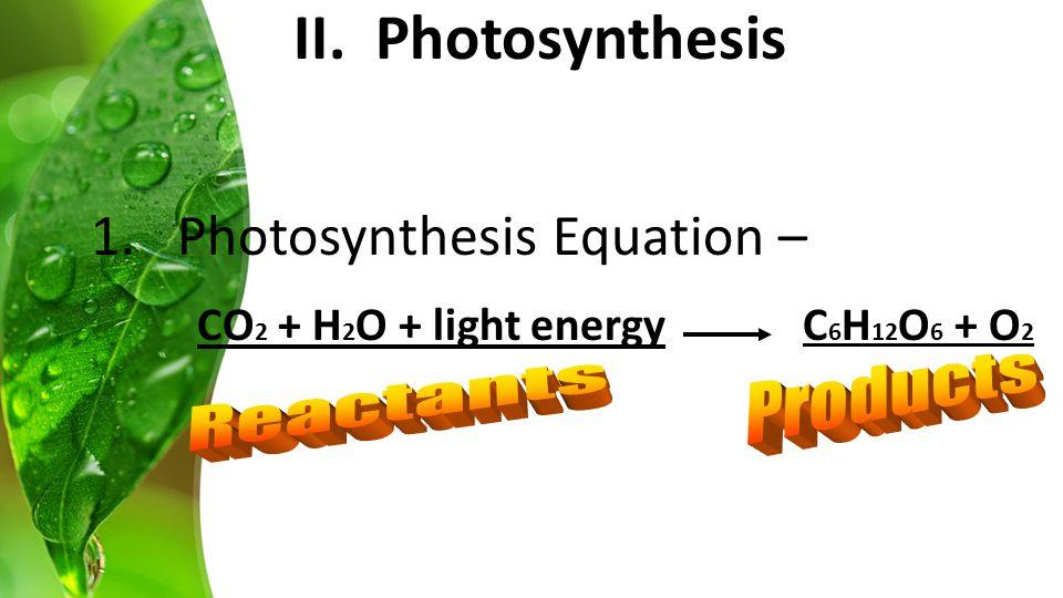 1.Photosynthesis Equation – CO 2 + H 2 O + light energy C 6 H 12 O 6 + O 2 II. Photosynthesis