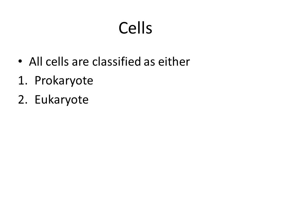 Prokaryote Cells no membrane bound nucleus, chromosomes grouped together in an area called the nucleoid no membrane bound organelles smaller than eukaryotes