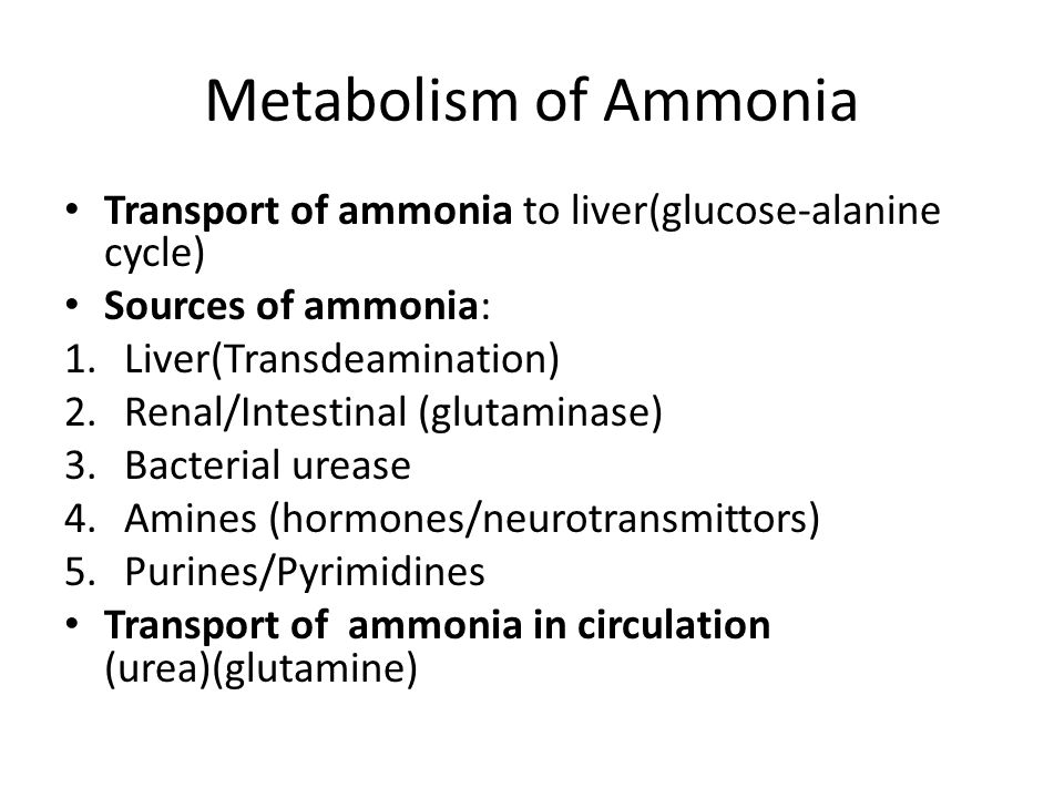 Metabolism of Ammonia Transport of ammonia to liver(glucose-alanine cycle) Sources of ammonia: 1.Liver(Transdeamination) 2.Renal/Intestinal (glutaminase) 3.Bacterial urease 4.Amines (hormones/neurotransmittors) 5.Purines/Pyrimidines Transport of ammonia in circulation (urea)(glutamine)