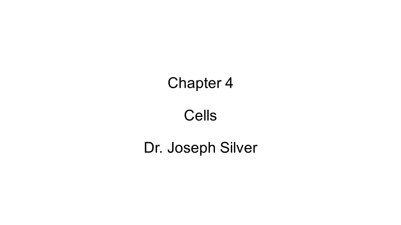 Chapter 4 Cells Dr. Joseph Silver