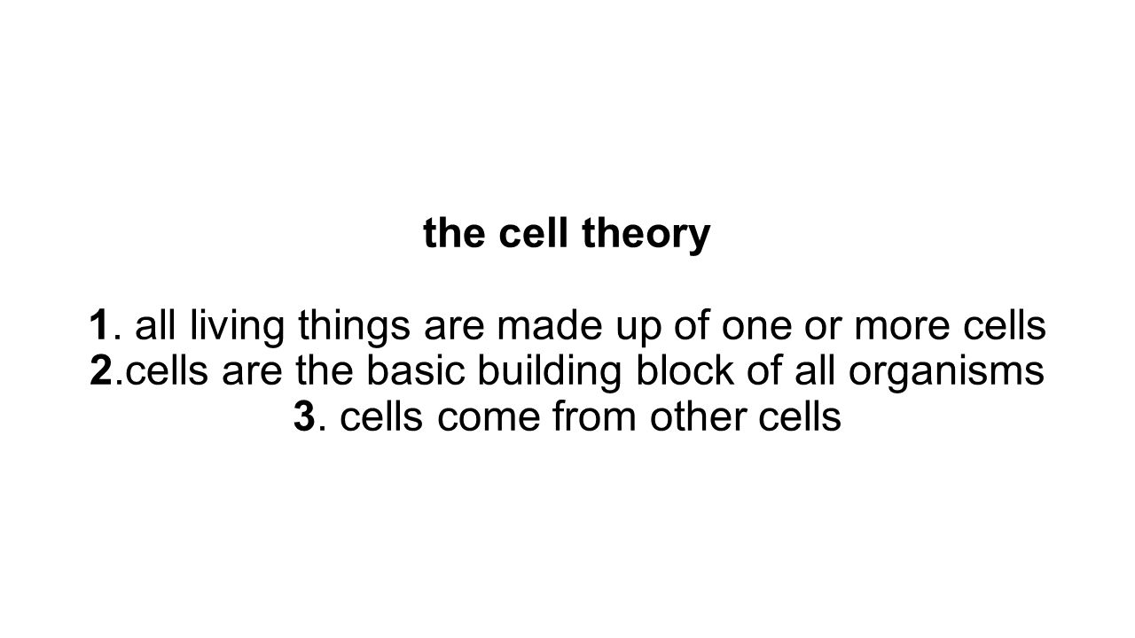 the cell theory 1. all living things are made up of one or more cells 2.cells are the basic building block of all organisms 3. cells come from other c