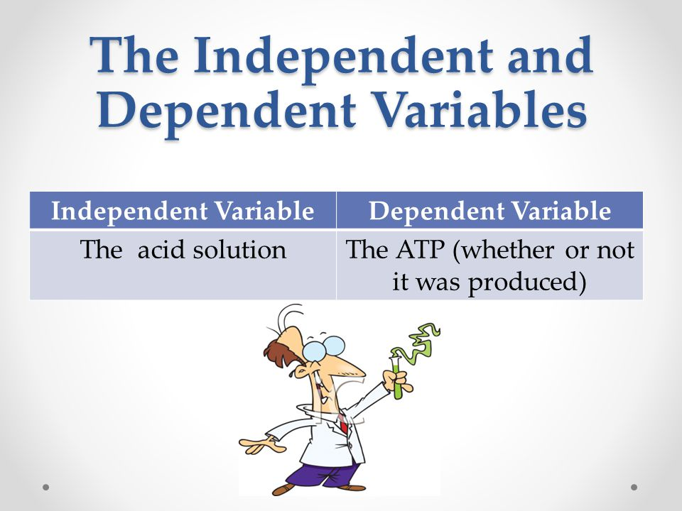 The Independent and Dependent Variables Independent VariableDependent Variable The acid solutionThe ATP (whether or not it was produced)