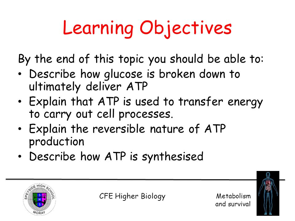 CFE Higher Biology Metabolism and survival