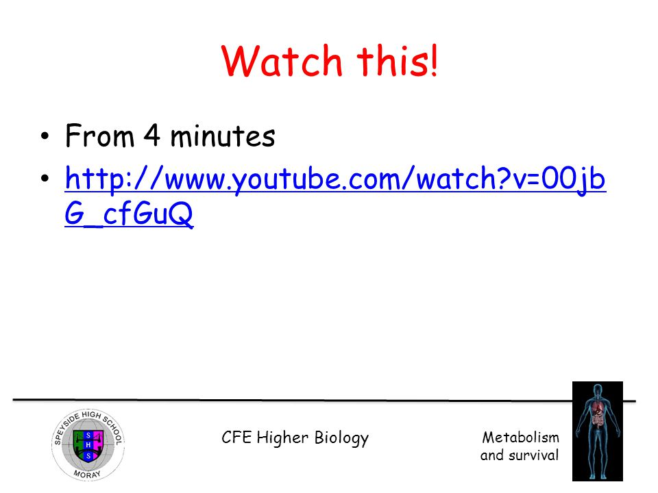 CFE Higher Biology Metabolism and survival Watch this! From 4 minutes http://www.youtube.com/watch?v=00jb G_cfGuQ http://www.youtube.com/watch?v=00jb