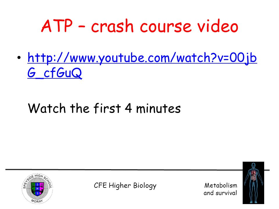 CFE Higher Biology Metabolism and survival ATP – crash course video http://www.youtube.com/watch?v=00jb G_cfGuQ http://www.youtube.com/watch?v=00jb G_