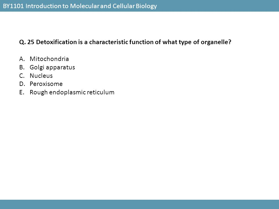 BY1101 Introduction to Molecular and Cellular Biology Q. 24 Which of the following structure is found in animal cells but NOT plant cells? A.Plasma me