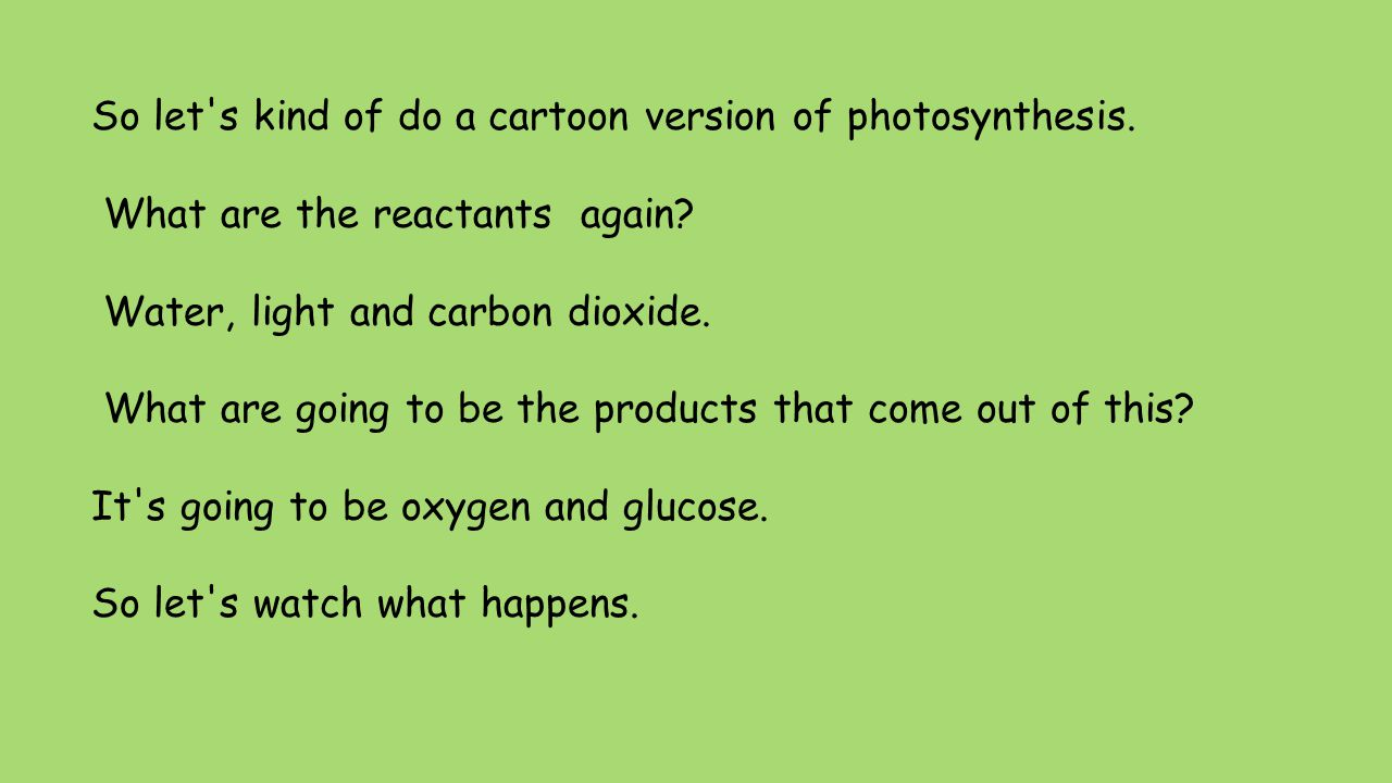 So let's kind of do a cartoon version of photosynthesis. What are the reactants again? Water, light and carbon dioxide. What are going to be the produ