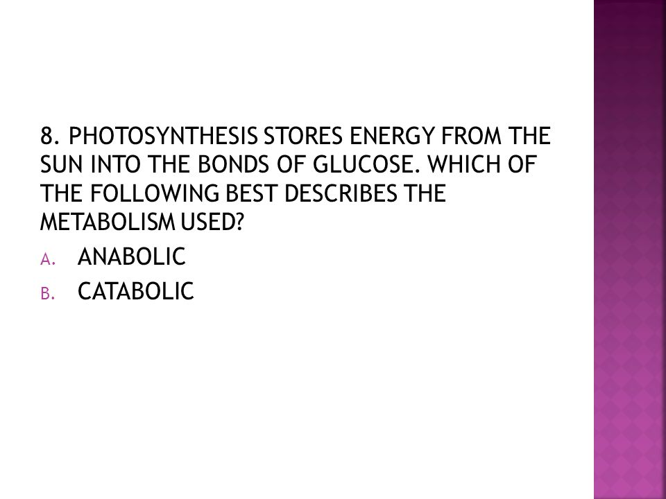 8.PHOTOSYNTHESIS STORES ENERGY FROM THE SUN INTO THE BONDS OF GLUCOSE.