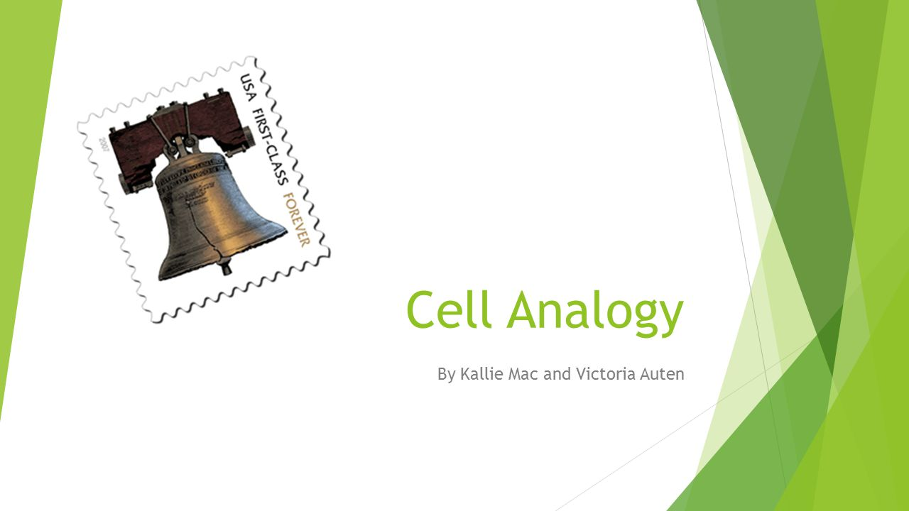 Cell Analogy By Kallie Mac and Victoria Auten