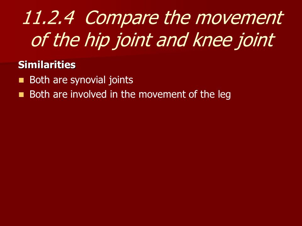 11.2.4 Compare the movement of the hip joint and knee joint Similarities Both are synovial joints Both are involved in the movement of the leg