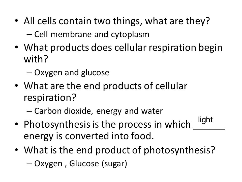 All cells contain two things, what are they.