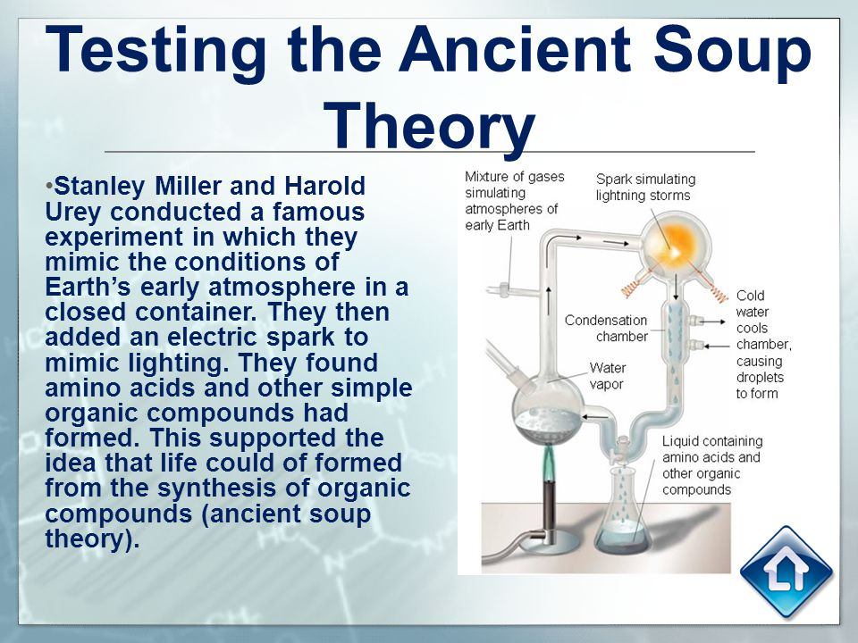 Testing the Ancient Soup Theory Stanley Miller and Harold Urey conducted a famous experiment in which they mimic the conditions of Earth's early atmos