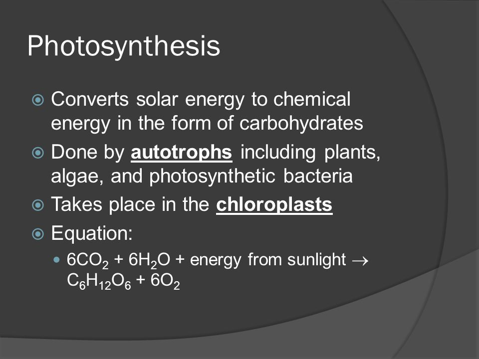 Photosynthesis  Converts solar energy to chemical energy in the form of carbohydrates  Done by autotrophs including plants, algae, and photosyntheti