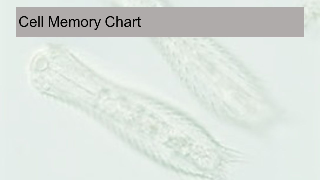 Cell Memory Chart