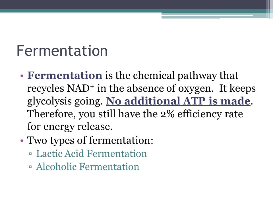 Fermentation Fermentation is the chemical pathway that recycles NAD + in the absence of oxygen. It keeps glycolysis going. No additional ATP is made.
