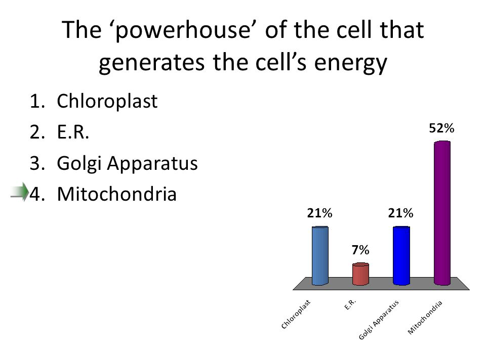 The 'powerhouse' of the cell that generates the cell's energy 1.Chloroplast 2.E.R. 3.Golgi Apparatus 4.Mitochondria