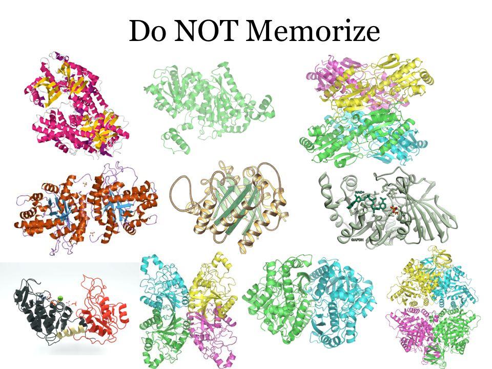 Do NOT Memorize