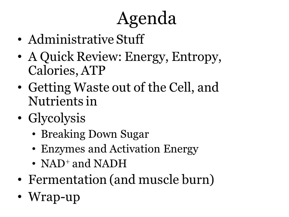 Agenda Administrative Stuff A Quick Review: Energy, Entropy, Calories, ATP Getting Waste out of the Cell, and Nutrients in Glycolysis Breaking Down Sugar Enzymes and Activation Energy NAD + and NADH Fermentation (and muscle burn) Wrap-up