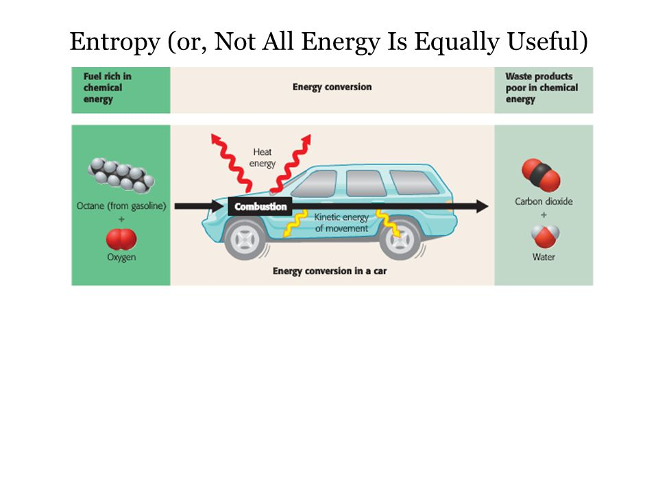 ATP: A Cellular Battery ADP can then be recycled into ATP by putting the phosphate back on, starting the cycle over.