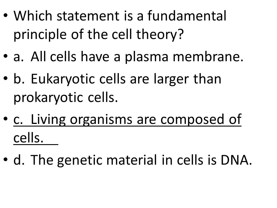 Which statement is a fundamental principle of the cell theory.