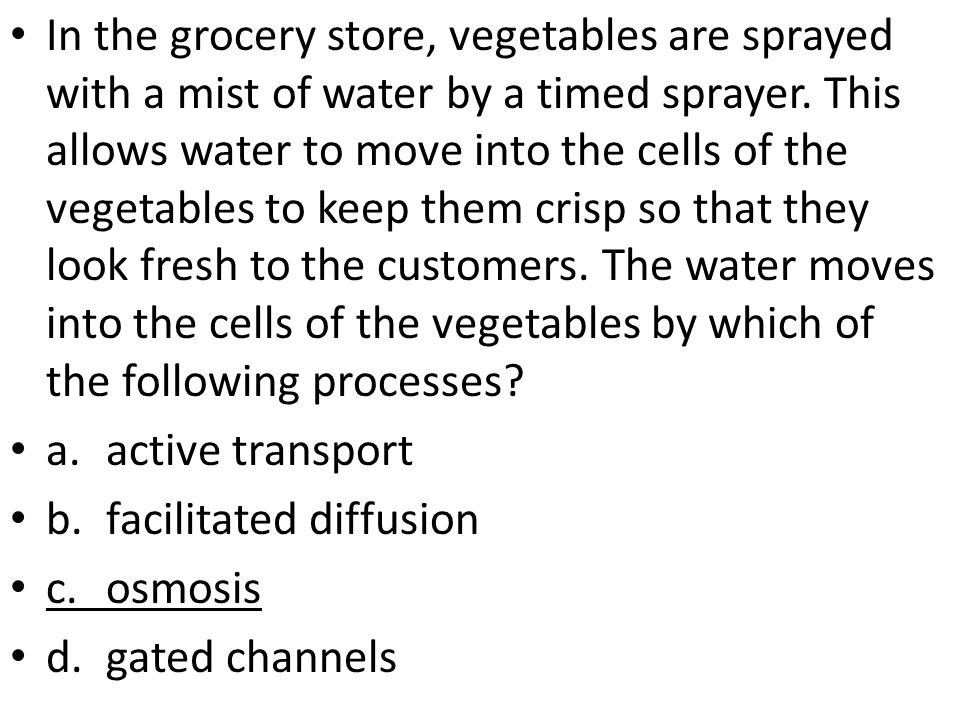 In the grocery store, vegetables are sprayed with a mist of water by a timed sprayer.