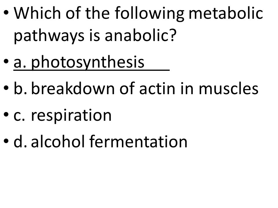 Which of the following metabolic pathways is anabolic.