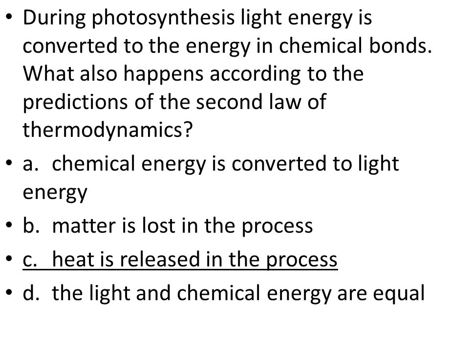 During photosynthesis light energy is converted to the energy in chemical bonds.