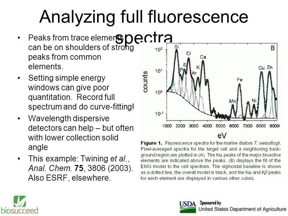 Analyzing full fluorescence spectra Peaks from trace elements can be on shoulders of strong peaks from common elements.