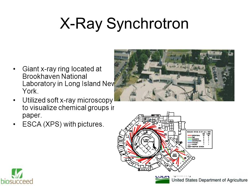 X-Ray Synchrotron Giant x-ray ring located at Brookhaven National Laboratory in Long Island New York.