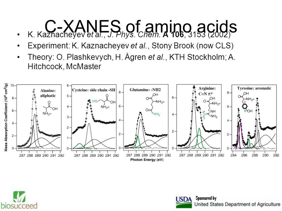 C-XANES of amino acids K. Kaznacheyev et al., J. Phys. Chem. A 106, 3153 (2002) Experiment: K. Kaznacheyev et al., Stony Brook (now CLS) Theory: O. Pl