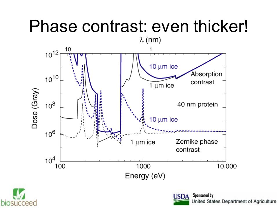 Phase contrast: even thicker!