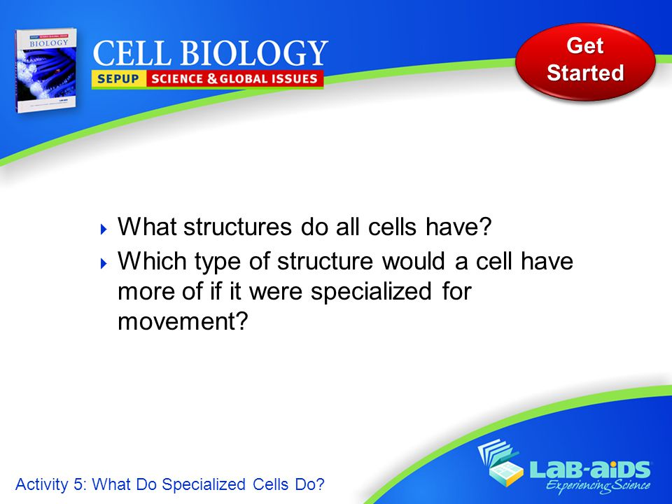 Activity 5: What Do Specialized Cells Do? Get Started  What structures do all cells have?  Which type of structure would a cell have more of if it w