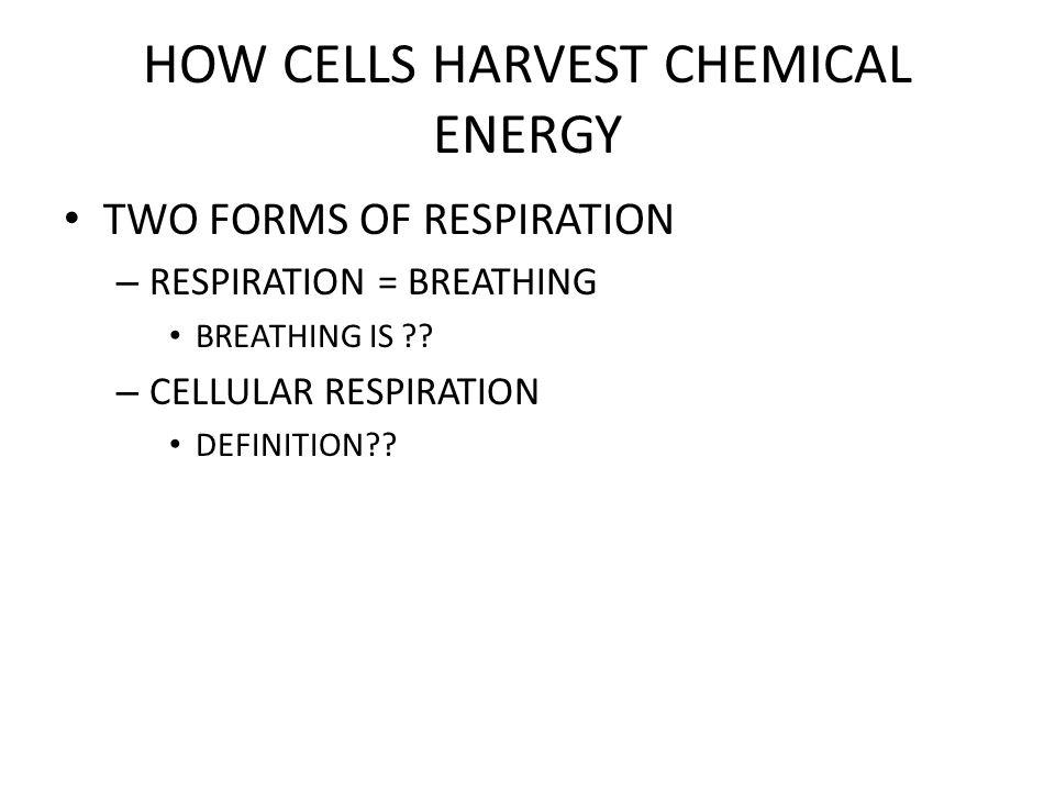 HOW CELLS HARVEST CHEMICAL ENERGY CELLULAR RESPIRATION – FORMULA?.