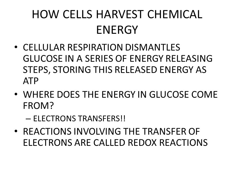 HOW CELLS HARVEST CHEMICAL ENERGY GLYCOLYSIS – SPLITTING OF SUGAR – GLUCOSE IS CHANGED TO PYRUVIC ACID IN A SERIES OF 9 STEPS – WHO WANTS TO MEMORIZE ALL 9 STEPS??
