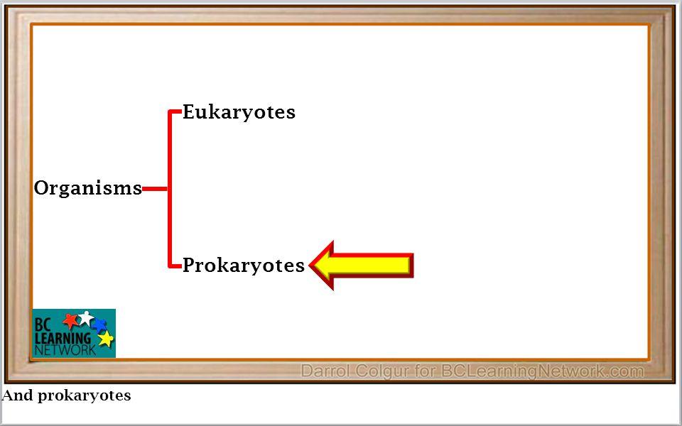 And prokaryotes Organisms Eukaryotes Prokaryotes